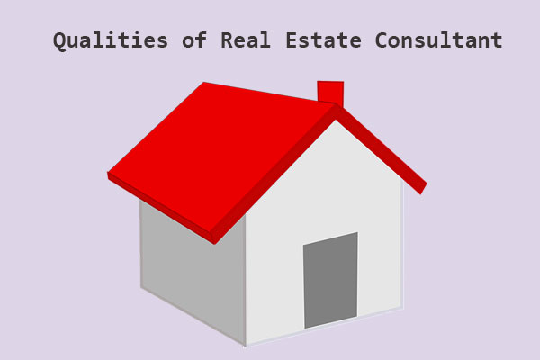 Real estate consultant